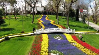 İstanbul'da lale zamanı: 8 milyon lale dikildi