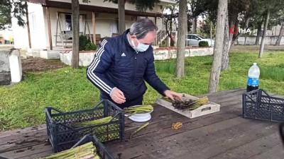 2 yıl önce Trakya'da ilk olarak ekilen kuşkonmazın hasadı yapıldı