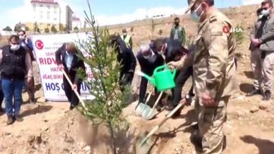 Erciş'te Afrin şehidi anısına 375  fidan dikildi