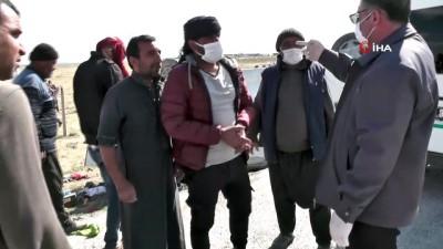 Tarım işçilerini taşıyan minibüs devrildi: 2 ölü, 6 yaralı