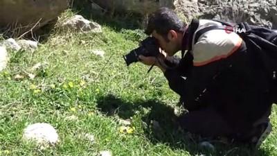 Terörden temizlenen Gabar ve Cudi Dağı fotoğrafçılara mekan oldu