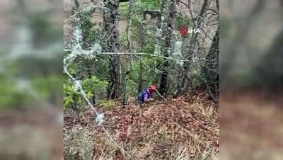 mahsur kaldi -  Tilki kovalarken düştüğü uçurumda 4 gündür mahsur kalan köpek kurtarıldı
