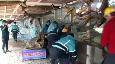 zabita -  Beylikdüzü Belediyesi'nden ücretsiz müzeye yıkım skandalı