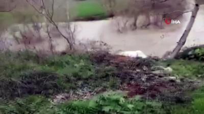 saganak yagis -  Göksu nehri taştı, tarım arazileri su altında kaldı