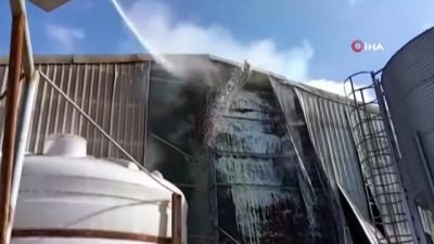 Kırklareli'de hayvan çiftliğinde yangın