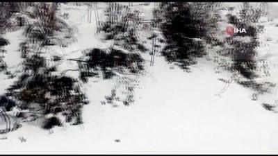 yagan -  Düzce'de Nisan ayında kar manzaraları
