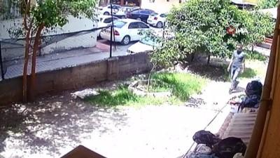 elektrikli bisiklet -  Suçüstü yakalanan hırsız tutuklandı