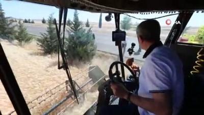 italyan -  Başkan Tahmazoğlu çiftçilerin hasat sevincine ortak oldu