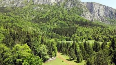 kayali - KASTAMONU - Küre Dağları yeşilin farklı tonlarıyla görsel şölen sunuyor