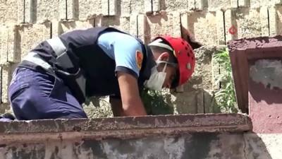 yardim cagrisi -  Duvara sıkışan kedi bulunamadı, sahibini itfaiye ekipleri teselli etti