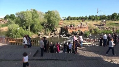 yasam mucadelesi - VAN - İnci kefali göçü devam ediyor