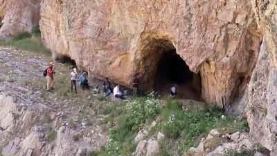 VAN - Put mağaralarının duvarlarına işlenen kaya resimleri incelenecek