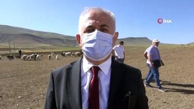 erimli -  30 koyunla başladı, devlet desteğiyle çiftlik kurdu