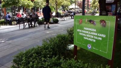 biyoloji - TRABZON - Parklar zararlılardan biyolojik mücadeleyle korunacak