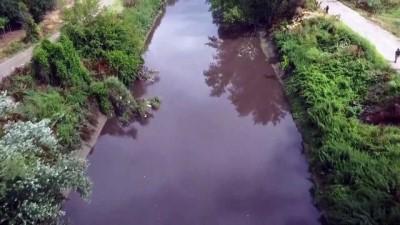 kimya - BURSA - Marmara Denizi'ne dökülen 'Nilüfer Çayı'nın rengi atık deşarjıyla kirlenip siyaha dönüyor (2)