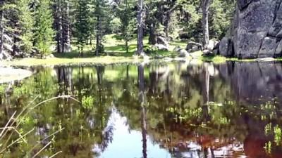 KÜTAHYA - Eğrigöz Dağı'nın zirvesindeki doğal gölet keşfedilmeyi bekliyor