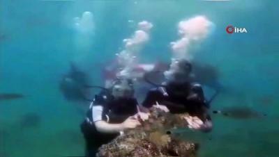 evlilik teklifi -  Antalya'da su altında romantik evlilik teklifi