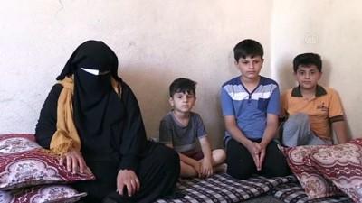 psikoloji - ŞANLIURFA - Savaş mağduru Suriyeli kadının görmeyen gözleri, Türkiye'de ışığa kavuştu