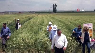 yerli tohum -  'Yerli ve milli tohumların ulaşmadığı çiftçi kalmasın'
