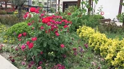 medeniyetler -  Boyabat Meydan Projesi kentin cazibe merkezi olacak