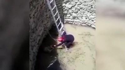 yazili aciklama - KAYSERİ - Kuyuya düşen köpek itfaiye ekiplerince kurtarıldı