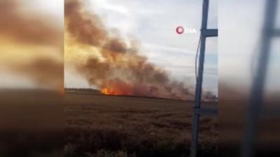 yuksek gerilim -  Yüksek gerilim hattı koptu, buğday tarlası alev alev yandı