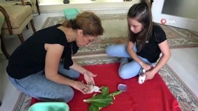 kalp masaji -  Anne-kızın çabası minik tavşanı yaşatmaya yetmedi