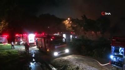 yuruyus yolu -  Bakırköy'de ağaçlık alanda korkutan yangın