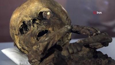 İşte 9. ve 11. yüzyıla ait insan ve hayvan mumyaları