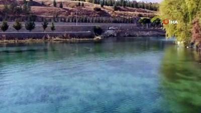 rekor -   'Kaynarca' 'dünyanın en büyük biyolojik göleti' için Guinness'a aday