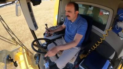 yerli tohum -  Konya'da atıl araziler ekilip hasadı yapıldı geliri vatandaşa aktarılacak
