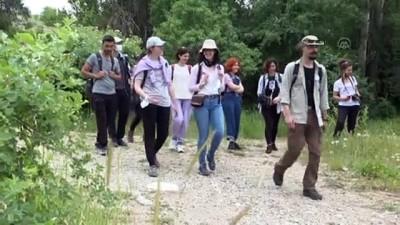 biyoloji - ANKARA - Doğaseverler ODTÜ'de bitki ve hayvan türlerini kayıt altına aldı