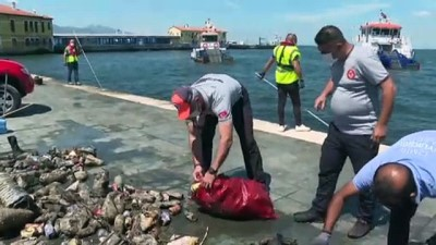 olta - İZMİR - Körfez'den scooter, ayakkabı, cam ve plastik atığa kadar yüzlerce çöp çıktı