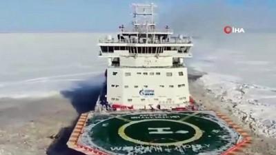 - Kuzey Kutbu'nda kaybolan köpeği, Rus buzkıran gemisi buldu