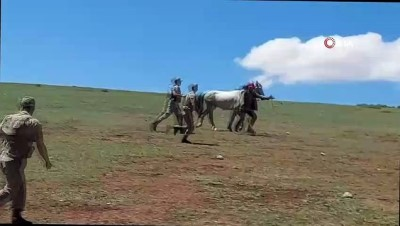 tahkikat -  Savaşa gider gibi at sırtında sopalarla kavgaya koştular