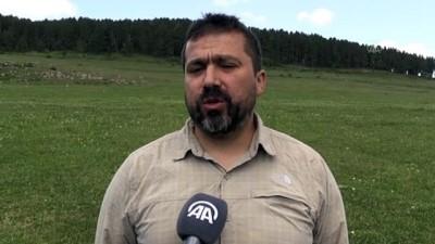 vasaklar - KARS - KuzeyDoğa Derneği Bilim Koordinatörü Çoban'dan Sarıçam ormanları için 'ekosistem restorasyonu' önerisi