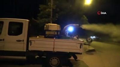 biyoloji -  Erzincan'da haşere ve sineklere karşı sokaklar ilaçlandı
