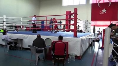 olimpiyat - KASTAMONU - Avrupa Yıldızlar Boks Şampiyonası'na katılacak erkek milli takımının seçmeleri yapılıyor