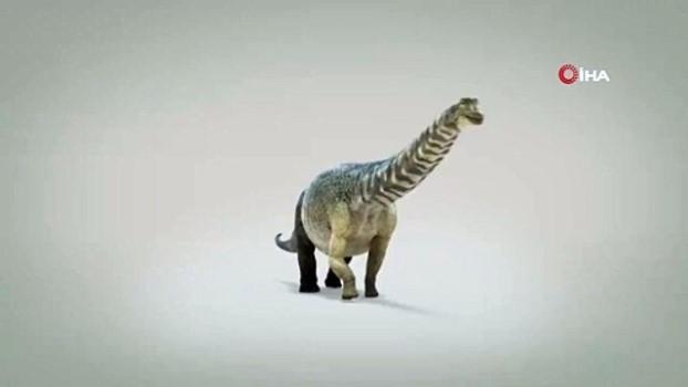 dinozor -  - Avustralya'da kıtanın en büyük dinozoru keşfedildi - Boyu 30 metre, ağırlığı 67 ton