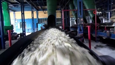 Malatya Şeker Fabrikası'nda birincilik sevinci