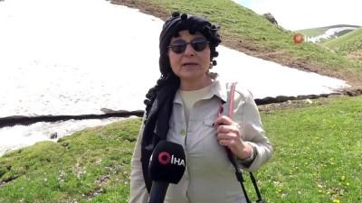 Prof. Dr. Güliz Elal, 4 mevsimin yaşandığı Yüksekova'yı karış karış gezdi