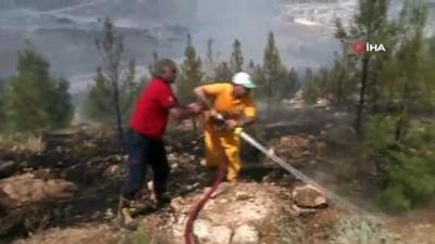 agacli -  Şanlıurfa'daki orman yangını kontrol altına alındı