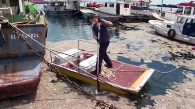 biyoloji - İSTANBUL - İstanbul Üniversitesi, müsilajı temizlemek için deniz bakterilerini kullanacak