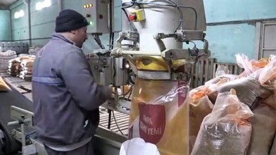 milyar dolar - KÜTAHYA - Tarım Kredi Yem AŞ, kanatlı hayvan yetiştiriciliğinde soyanın alternatifini buldu Videosu