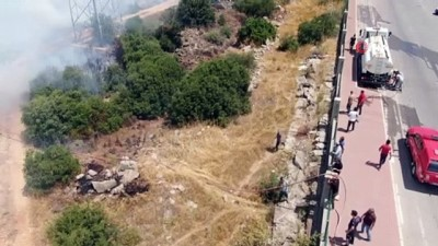 yuksek gerilim -  Zeytinpark'ın çamları alev alev yandı