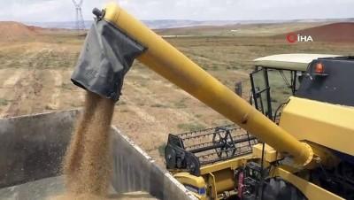 gubre -  Binlerce dönümlük çorak arazi yeniden tarıma kazandırılıyor