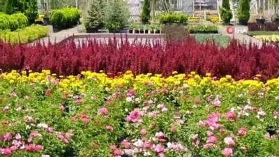 gubre -  ANFA'dan çiçek üreticilerine destek