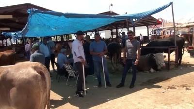 keci -  Kurban pazarının en büyükleri alıcısını buldu