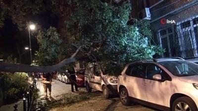 cocuk parki -  Beşiktaş'ta hafif ticari aracın üstüne ağaç devrildi
