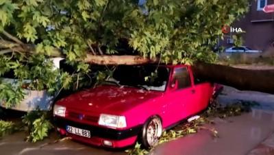 Edirne'de fırtına nedeniyle ağaçlar arabaların üstüne devrildi, çok sayıda araç hasar gördü